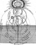 robert-fludd-utriusque-cosmi-y-historia-ii-1619-p-275-man-the-microcosm-wellcome-1.png